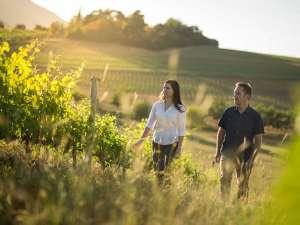 Winelands Südafrika Mullineux