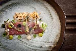Gourmet Südafrika Cellars Hohenhort Hotel Thinfisch Tempura Spagetti