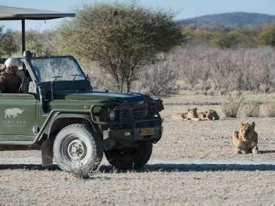 Namibia Selbstfahrer Oevans Ongava Lodge Etosha Park