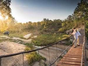 Safari Südafrika Sabi Sand Dulini Lodge Elefant