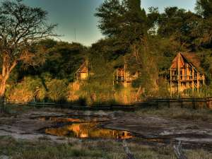 Savute Safari Lodge Botswana Safari Desert and Delta Safaris
